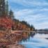 """Fall Foliage"" by Doug Philipon, Oil on Board"
